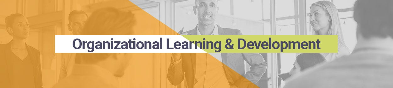 Organizational Learning and Development