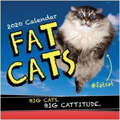 2020 Fat Cats Wall Calendar
