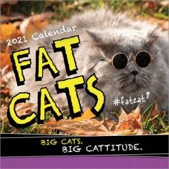 2021 Fat Cats Wall Calendar